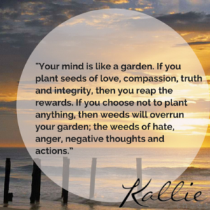 _Your mind is like a garden. If you (2)